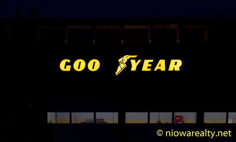 Goo Year