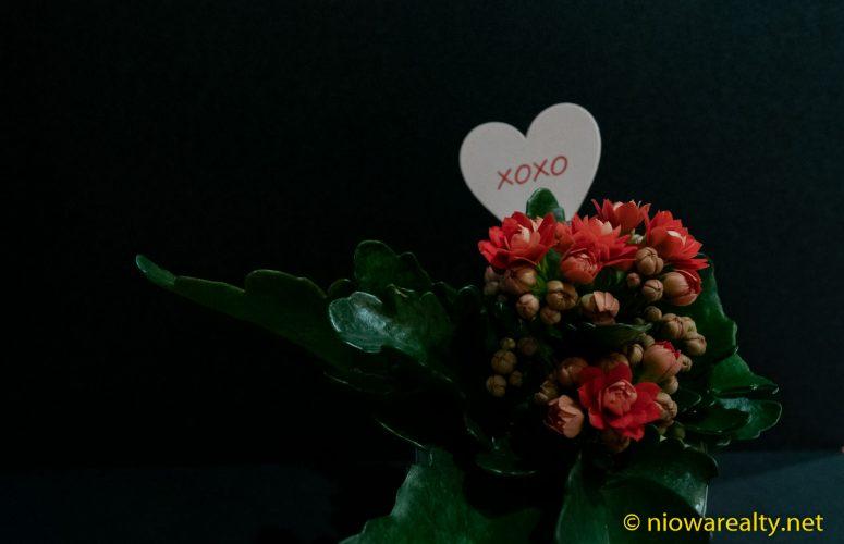2019 Valentine's Day