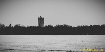 Corn-munching Country