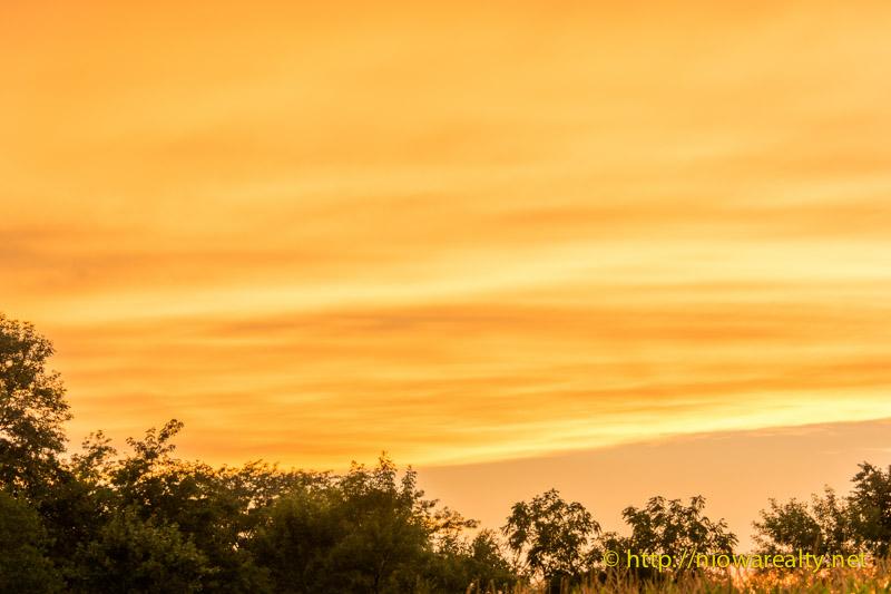 Amber-Evening