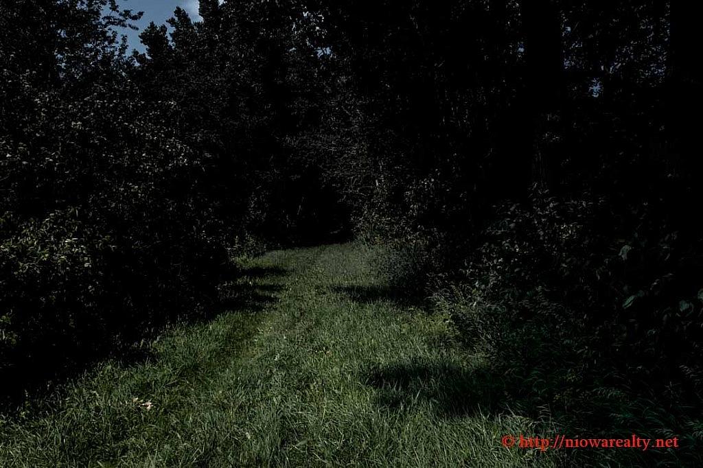 grove-1